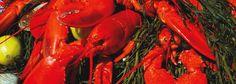 Stewman's Lobster Pound | Fresh Maine Lobster Restaurant - Bar Harbor, Maine
