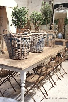 Great Dutch Flower Bulb Baskets with Olive Trees