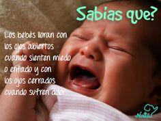Un #datocurioso muy interesante respecto al llanto de los bebés