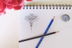 Learn How to Draw Flowers in Just 4 Steps!