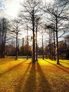 Wilmington North Carolina Dawson S Creek Hart Of Dixie Film Set Film Locations I Want To