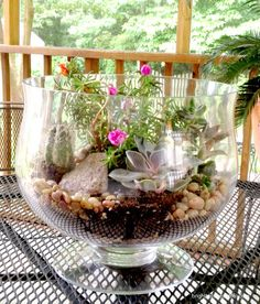 how to make a succulent garden, flowers, gardening, succulents, Succulent garden with flowering succulents