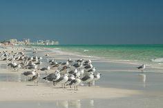 Destin Florida Beach... Fave childhood spot!