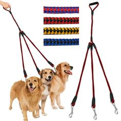 Great savings on this 3 Way No Tangle Leash with Pawsifty - your source of daily pet deals with free worldwide delivery.    http://www.pawsify.com/product/3-way-no-tangle-leash/