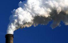 Kan je zien dat de uitdaging van de vervuiling, mensen krachtiger maakt om verandering te starten. En dat dit iets is waar we dankbaar voor kunnen zijn? Door die uitdaging te omarmen en lief te hebben, gaan de oplossingen veel sneller en gemakkelijker komen dan dat we zo hard vechten tegen die vervuiling. www.de-nieuwe-aarde.be