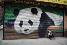 BKFoxx in Chinatown NYC