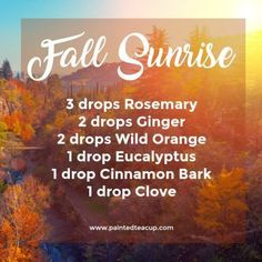 5 Must Try Fall Essential Oil Diffuser Blends - Painted Teacup Fall Sunrise Diffuser Blend Fall Essential Oils, Ginger Essential Oil, Patchouli Essential Oil, Essential Oil Diffuser Blends, Essential Oil Uses, Juniper Berry Essential Oil, Diffuser Recipes, Young Living, Skin Care