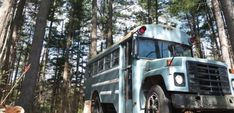 If you'd never consider sleeping in a hippie bus in a forest, then you may reconsider after seeing this romantic bus in a pine forest in western North Carolina! North Carolina Hotels, Western North Carolina, North Carolinians, Old School Bus, Composting Toilet, Castle In The Sky, Pine Forest, Beautiful Lights, Summer Nights