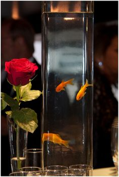 Red rose and gold fish wedding table centre. Maybe not goldfish, but colorful fish in with flowers