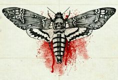 Bloody death's head hawk moth