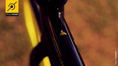 A pequena abelha, que inspirou a bike fixa Speedbee. Ela é preta, amarela e voa rápido