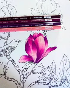 Coloring Book Art, Coloring Tips, Colouring Pages, Adult Coloring Pages, Colored Pencil Tutorial, Colored Pencil Techniques, Blending Colored Pencils, Colouring Techniques, Drawing Techniques