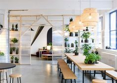 Plants on shelves and a simple communal table for eating and informal after work drinks