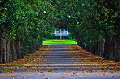 The entrance to the Augusta National Golf Club-put it on your bucket list.