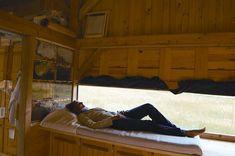 Descansa y curate dentro de una colmena