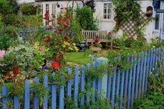 blauw tuin hekje