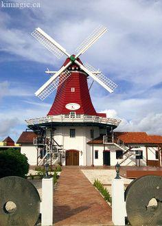 Moulin Rouge, Aruba