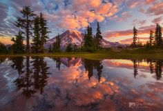 Mount Rainier Tarn at Sunrise. A tarn at Sunrise in Mout Rainier National Park by Chip Phillips on Parc National, National Parks, Beautiful World, Beautiful Places, Landscape Photography, Nature Photography, Sunrise Photography, Park Photography, Mount Rainier National Park