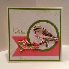 39 Ideas Birthday Card For Her Creative Stampin Up Birthday Cards For Women, Funny Birthday Cards, Butterfly Cards, Flower Cards, Bee Cards, Little Birdie, Animal Cards, Homemade Cards, Stampin Up Cards