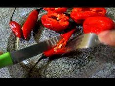 Como plantar qualquer pimenta e pimentao parte 1-Curso Gratuito ,passo a...