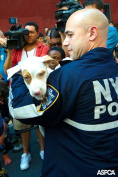 Thanks to our partnership with the NYPD, we can now save even more animals! Learn more here: www.aspca.org/blog/aspca-and-nypd-partners-against-crime