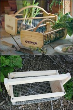 Harvest, rinse, drain and bring in produce from your garden easily with this quality garden hod! Need one?