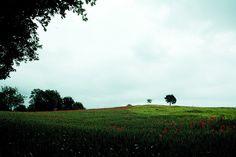 prato a Guardiagrele by guglielmo paradisi