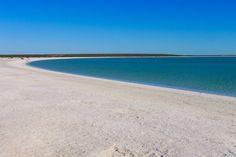 Shell Beach - Strand aus winzigen Herzmuscheln - Shark Bay in der Nähe von Hamelin Pool - Western Australia
