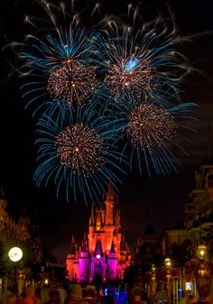 Mickey's Not So Scary Halloween Party 2013 Tips & Plan