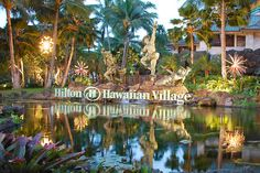Hilton Hawaiian Village: Oahu   Stayed here the first time we were in Hawaii.  Loved it