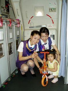 World stewardess Crews: The beautiful stewardesses in Xiamen Airlines Airline Uniforms, Up Skirt Pics, Girls In Panties, Native American Women, Xiamen, Cabin Crew, Flight Attendant, Funny Moments, Beauty Women