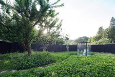 sou fujimoto's public toilet in ichihara is a garden escape - designboom | architecture