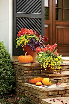 Potted Fall flowers: snapdragons and violas