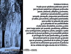 IRMA PEREZ La Pillis: Poemas Mayo 3/2012 PONME A ESCOGER/POESIA POEMA/LETRAS MUERTAS/TU MI TIERRA/ TODO PASA/TODO DE TI/TAJALAPIZ/UN CAFE