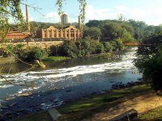 Espuma, fruto da mistura de esgoto doméstico com a água do rio, surge no Rio Piracicaba (Foto: Antônio Cláudio Sturion Junior/Sodemap)