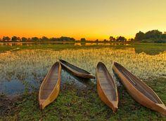 Botswana | Insolit viajes