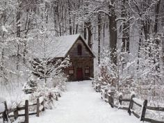 pagewoman: source Cottage in the woods.