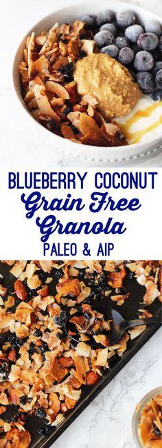 Grain Free Blueberry Coconut Granola (Paleo & AIP) - Unbound Wellness