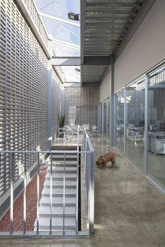 Gallery of Dunza Headquarters / Morari Arquitectura + JAA - 2