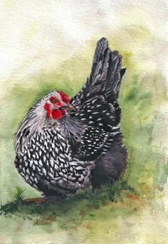 Aceo Gwennie the Little Hen  chicken  farm nature print of original painting  #Realism