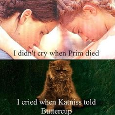 Prim's death was so shocking it didn't hurt me until Katniss told Buttercup. I was sobbing, at like midnight- and my mom asked what was wrong and I just went- the hunger games. Hunger Games Memes, The Hunger Games, Hunger Games Fandom, Hunger Games Catching Fire, Hunger Games Trilogy, Hunger Game Quotes, Catching Fire Funny, Catching Fire Quotes, Hunger Games Mockingjay