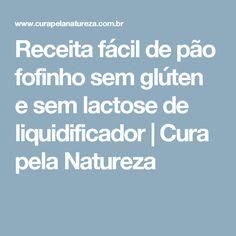 Receita fácil de pão fofinho sem glúten e sem lactose de liquidificador   Cura pela Natureza