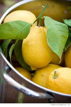lemons....