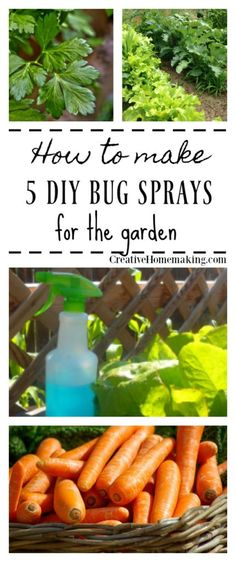 5 easy DIY bug sprays to make to fight unwanted pests in the garden.