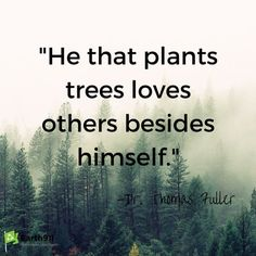 According to the environmental quote I need to go plant a few trees.