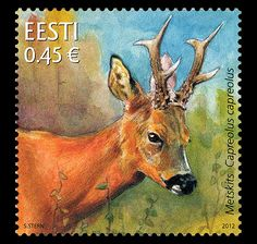 Estonian Fauna - Roe Deer Issue Date: Designer: Sándor Stern Printer: AS Vaba Maa Process: Offset Colours: 4 Colours Size: x mm Values: World Wild Life, Roe Deer, Stamp Collecting, Postage Stamps, Mammals, Habitats, Wildlife, Thin Legs, Reddish Brown