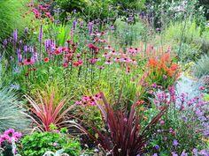 flowers for secret gardens | Flower Garden
