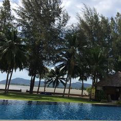 The Mangrove hotel - Big Buddha is in the distance - photo courtesy of Instagram and majajarnved