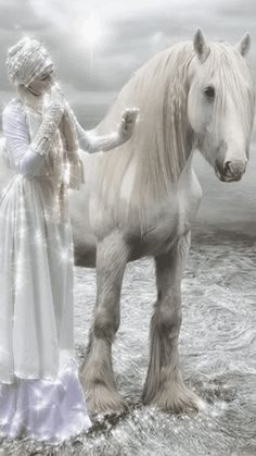 White Horse and Snow Mistress Just click on gif see motion