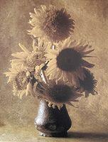 (CD-355) - Cy DeCosse: Sunflower Bouquet